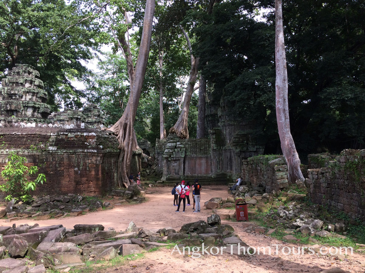 Showing Trees Growing Through Second Ring Wall Ta Prohm