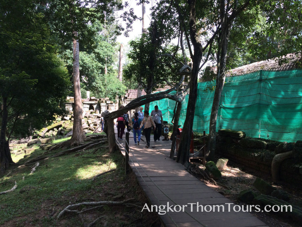 Tree Roots Make Archway Over Visitor Path Ta Prohm